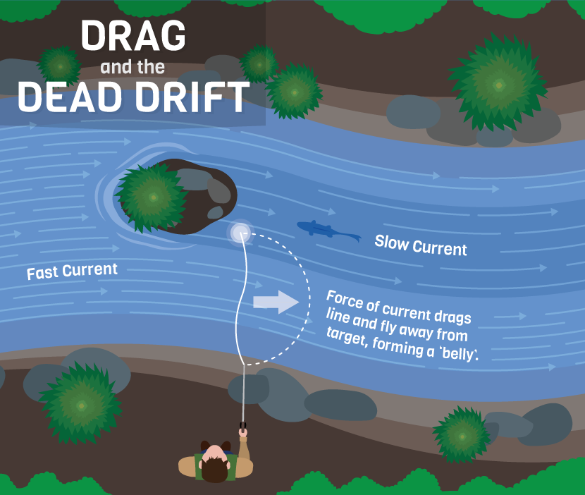 drag-and-the-dead-drift